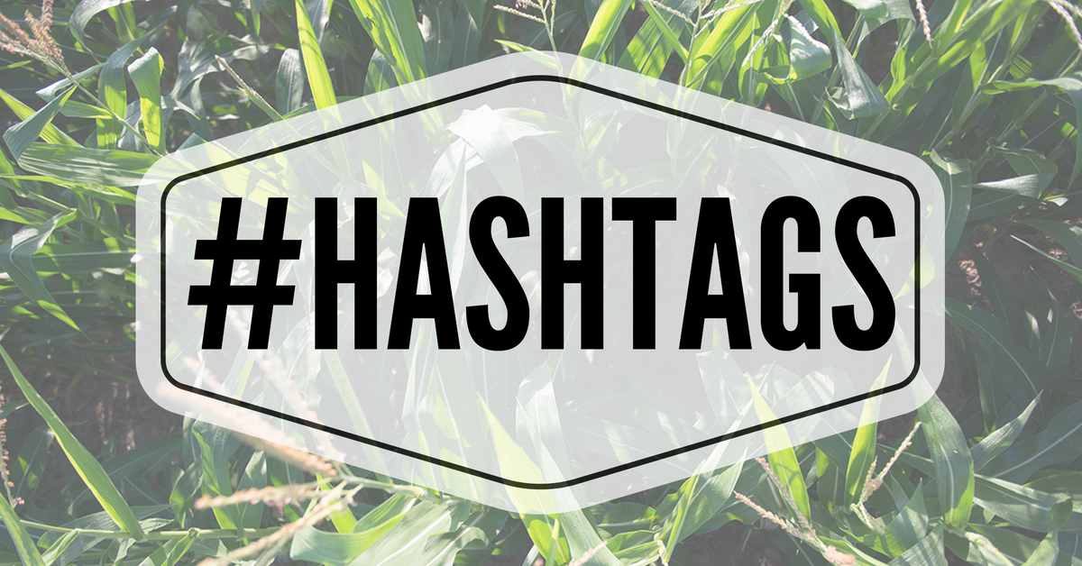 Do you really need to use hashtags?